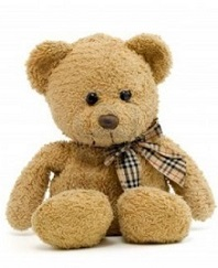 teddy-bear-on-a-white-background